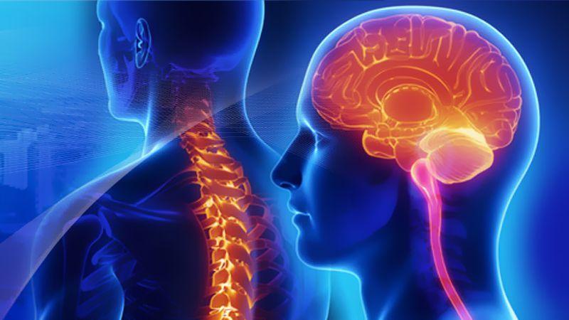 ¿Qué es la fisioterapia neurológica?